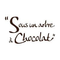 Sous un arbre à Chocolat